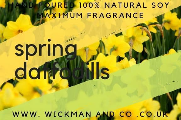 Spring Daffodils Soy Wax Candle
